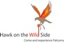 Hawk on the Wild Side Logo